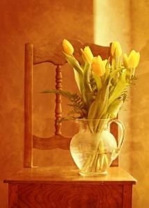 tulip-bouquet-1715054_1280