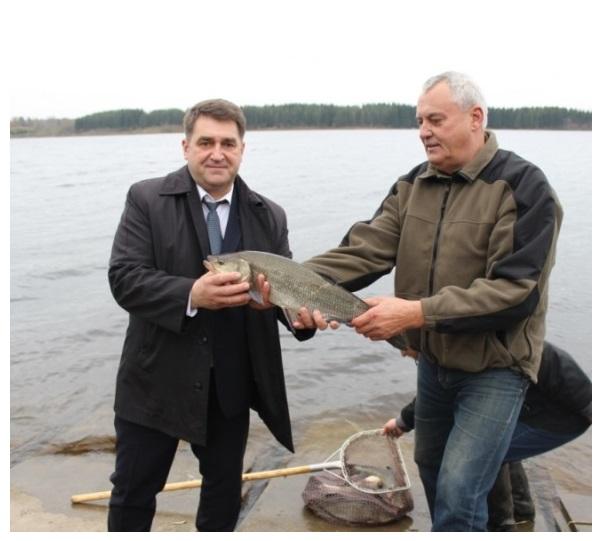 Į Kupiškio marias įleistas 31 salatis