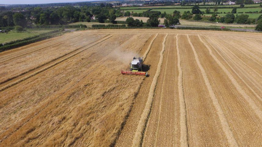 Žemės ūkio rūmų Taryba: B. Markausko situacijoje gali būti didžioji dalis ūkininkų